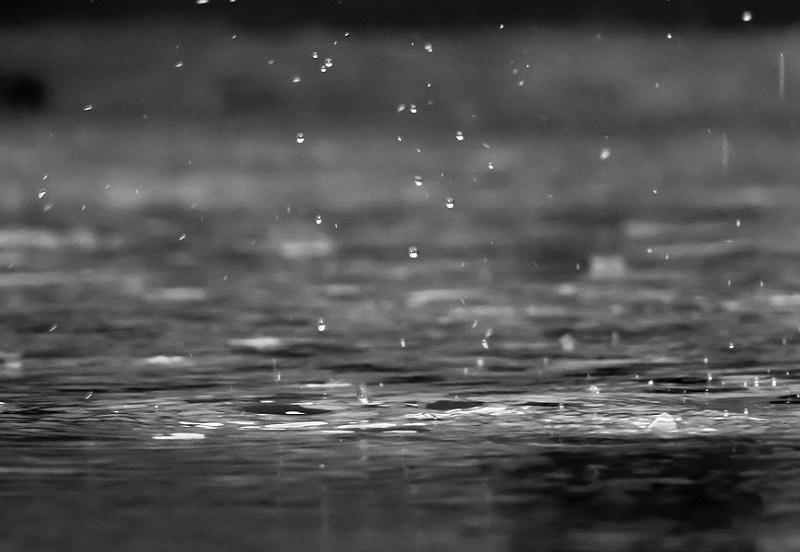 azienda-agricola-san-ruggiero-rain-800x552