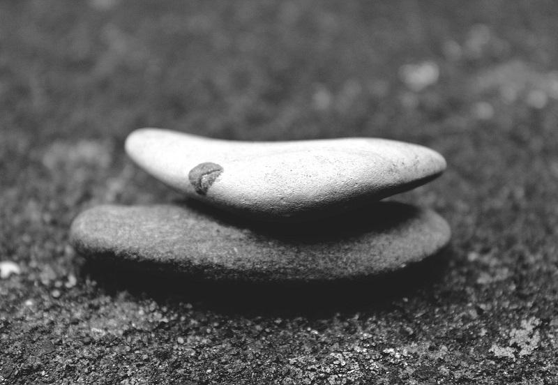 azienda-agricola-san-ruggiero-stones-800x552